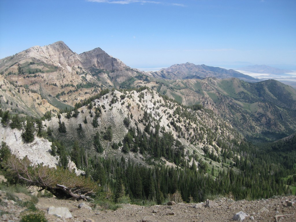 Some beautiful mountain scenery in the Stansbury Mountains near Deseret Peak.