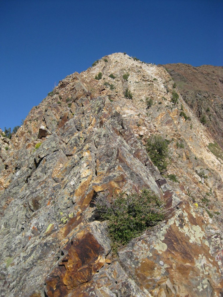 Looking up the lower part of the ridge.
