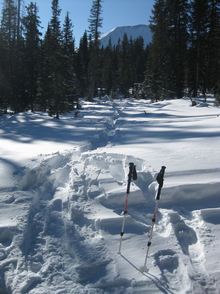 Our path through the snow. Mt. Mellenthin, out goal mountain, is in the background.