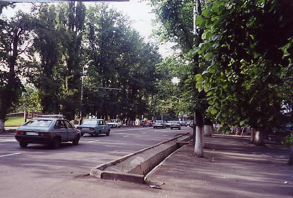 An average street.