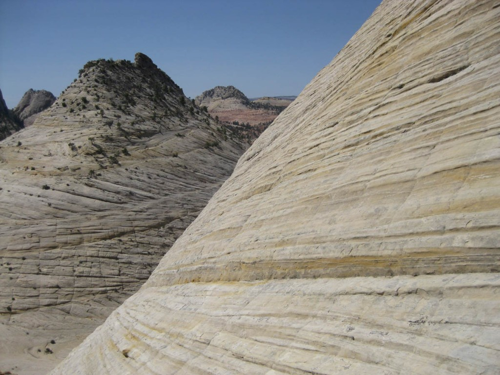 The angle and texture of the rock.