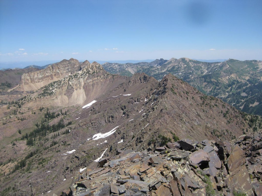 Looking east over to Mt. Superior from the top of Dromedary.